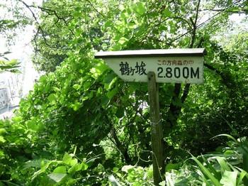 20100808_032.JPG