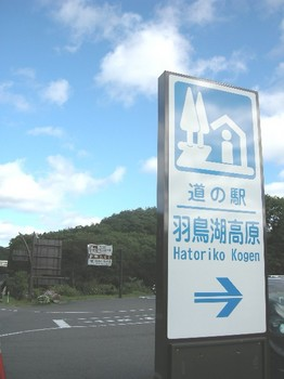20101011_14.JPG